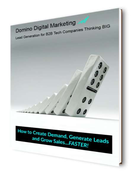 Domino Digital Marketing B2B Lead Generation Services